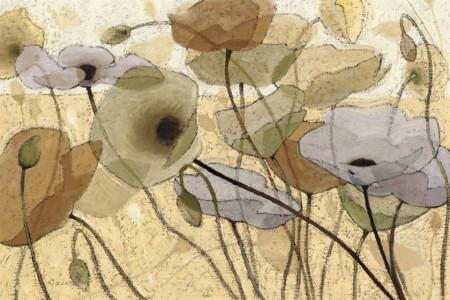 Tablouri Canvas, Maci blânde pe fundal bej