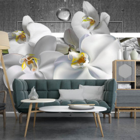 Fototapet 3D, O orhidee albă pe un fundal gri