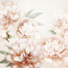 Fototapet, Bujori delicati roz