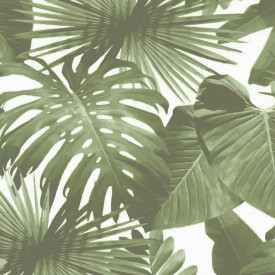 Fototapet, Frunze verzi pe un fundal alb