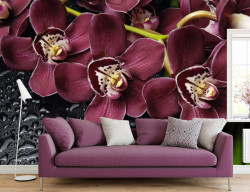 Fototapet, Orhideele Bordeaux