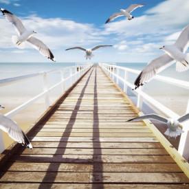 Fototapet, Podul din lemn cu pescăruși
