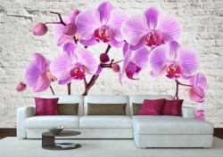 Fototapete, Orhideea roz pe fundal de cărămizi de culoare albă