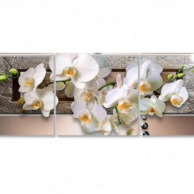 Multicanvas, Orhideea pe un fundal maro.