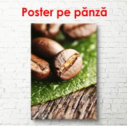 Poster, Boabe de cafea