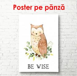 Poster, Bufniță pe un fundal alb
