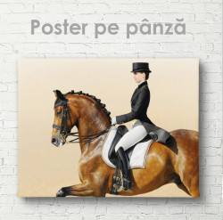 Poster, Călărie