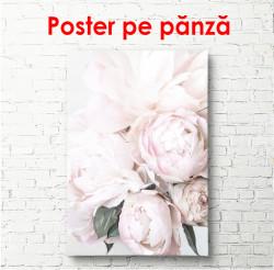 Poster, Cel mai delicat buchet de bujori