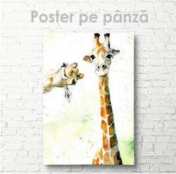 Poster, Doua girafe drăgălașe