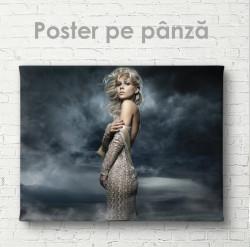 Poster, Fată într-o rochie elegantă