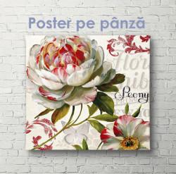 Poster, Floare frumoasă în acuarelă