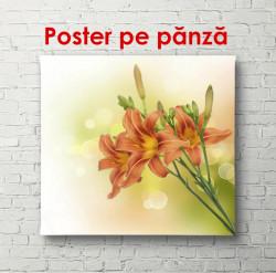 Poster, Flori portocalii pe un fundal delicat
