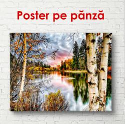 Poster, Mesteacăn lângă lac, la apusul soarelui