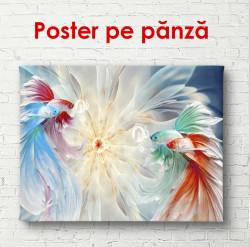 Poster, Pește colorat
