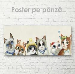 Poster, Pisoii