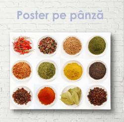 Poster, Platou de condimente diferite