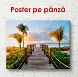 Poster, Podul din lemn lângă plajă cu palmieri