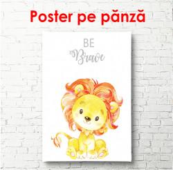 Poster, Pui de leu pe fundal alb