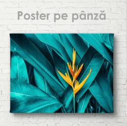 Poster, Verdeață tropicală