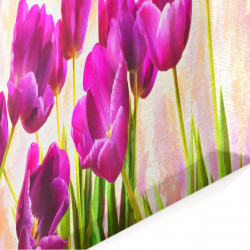 Tablou modular, Lalele roz