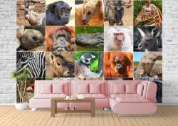 Fototapete, Animale exotice