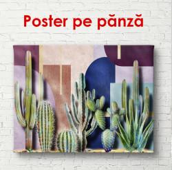 Poster, Cactuși verzi pe un fundal colorat