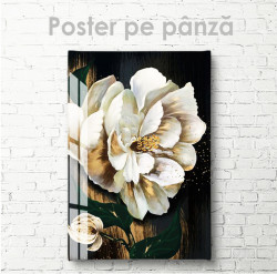 Poster, Floare albă pe fundal închis