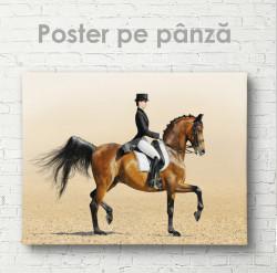 Poster, Graţie