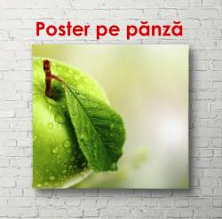 Poster, Mărul verde