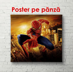 Poster, Omul de păianjen la apusul soarelui