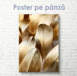 Poster, Pene aurii