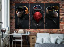SET, Maimuțe moderne