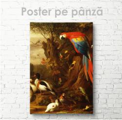 Постер, Păsări