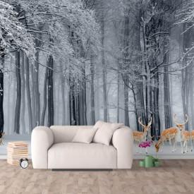 Fototapet, Pădurea iarna