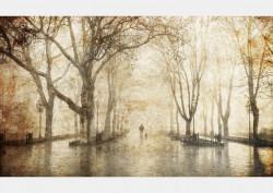Fototapet, Peisaj de toamnă într-un parc