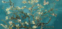 Fototapet, Ramură de copac în flori pe fond turcoaz