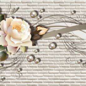 Fototapet, Trandafir delicat pe un fundal gri cu linii