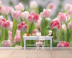 Fototapete 3D, Câmp de lalele roze