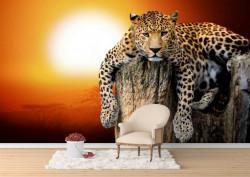 Fototapete, Leopard pe fundalul unui apus