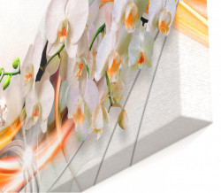 Multicanvas, Orhideea albă și modele portocalii.