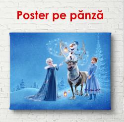 Poster, Basm de iarnă