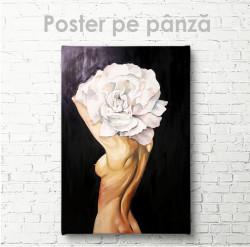 Poster, Bujor alb