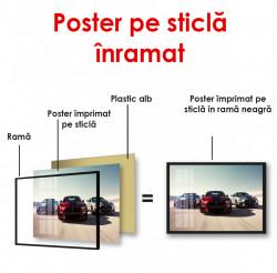 Poster, Cursă de mașini