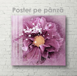 Poster, Magie purpurie