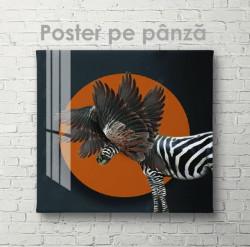 Poster, Zebră fantastică