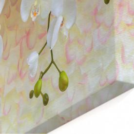 Tablou modular, Orhidee pe un fundal bej.