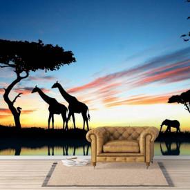 Fototapet, Peisaj din lumea animalelor