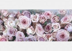 Fototapet, Trandafiri deosebiți