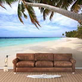 Fototapet, Un palmier frumos pe plajă
