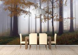Fototapete Pădure în ceață